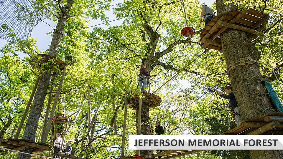 Go Ape rope course at Jefferson Memorial Forest park.
